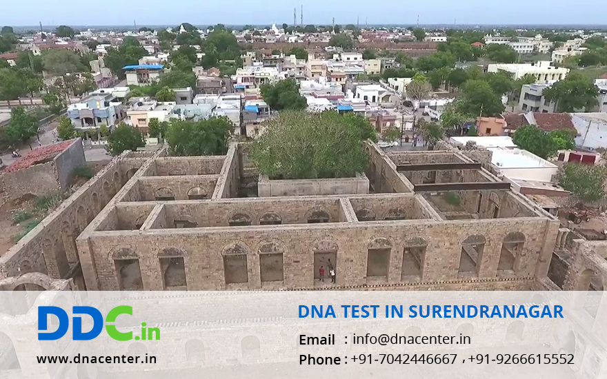 DNA Test in Surendranagar