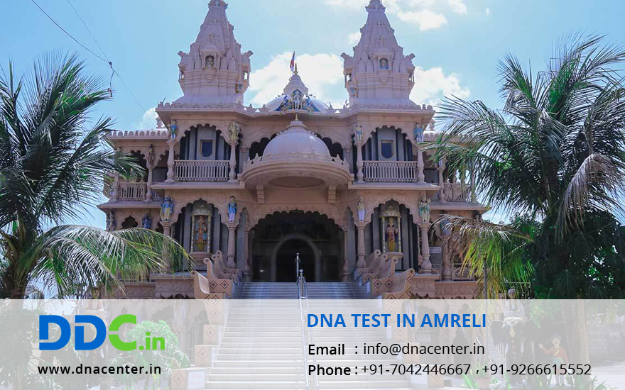 DNA Test in Amreli