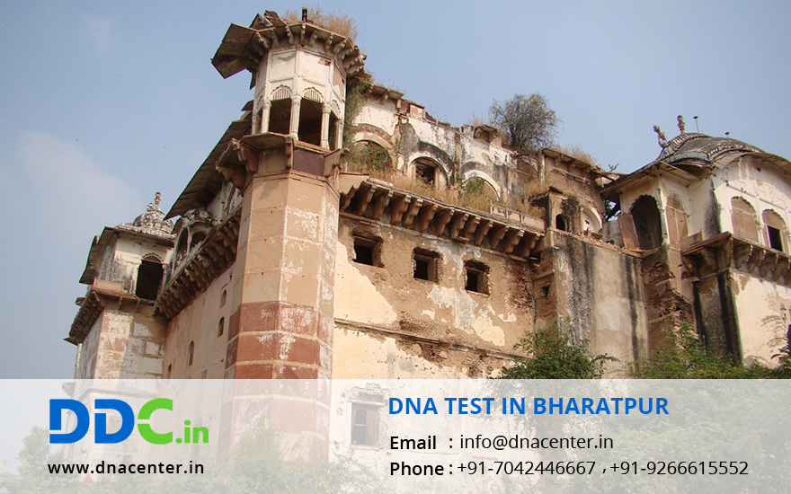 DNA Test in Bharatpur