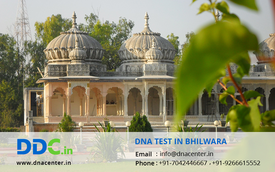 DNA Test in Bhilwara
