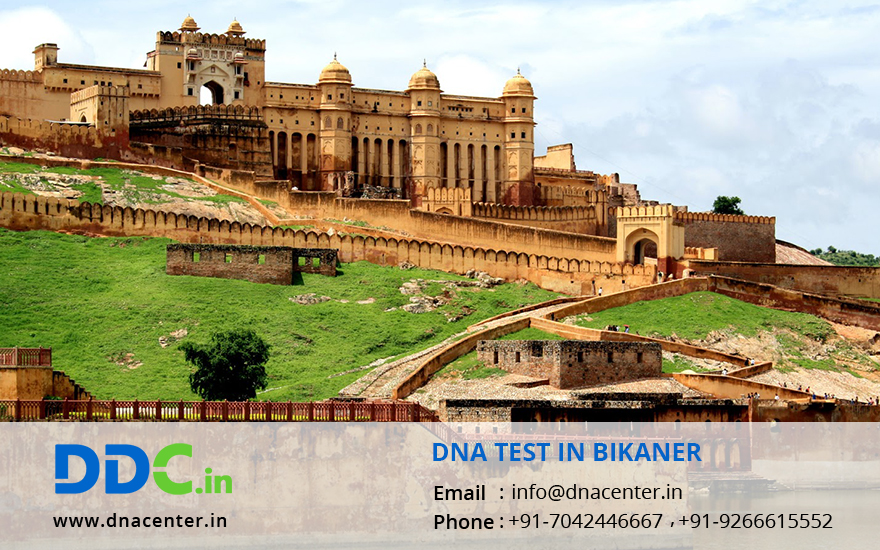 DNA Test in Bikaner