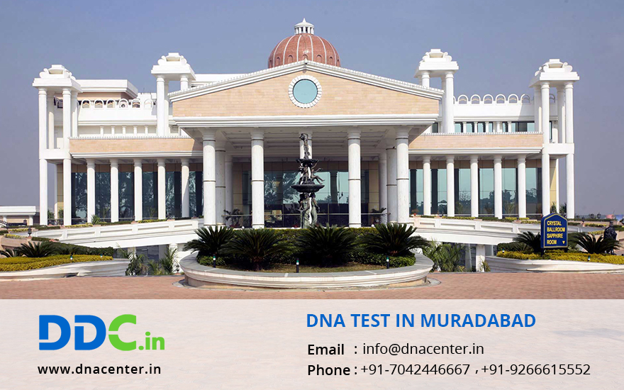 DNA Test in Moradabad