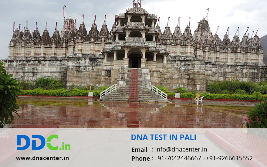 DNA Test in Pali