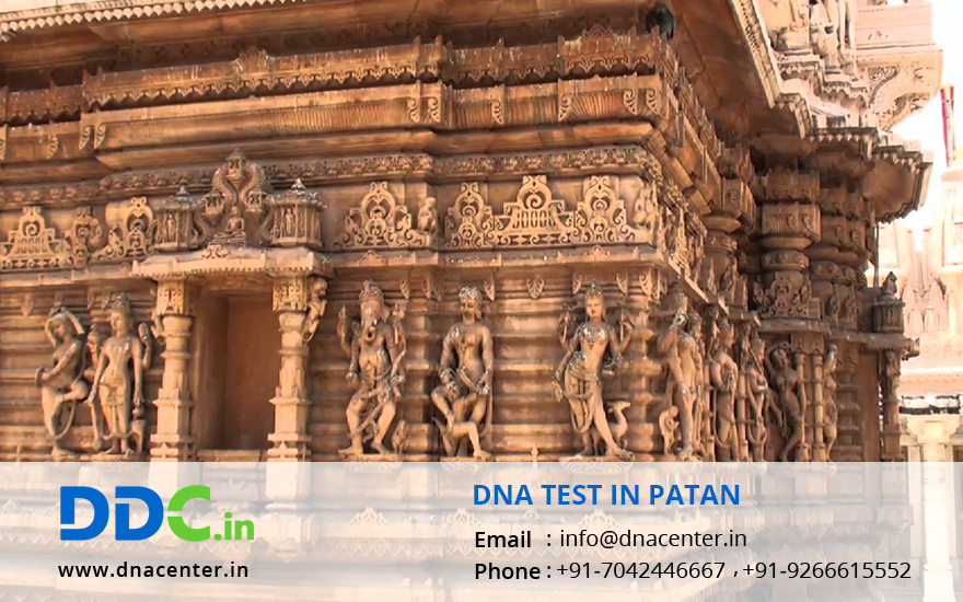 DNA Test in Patan