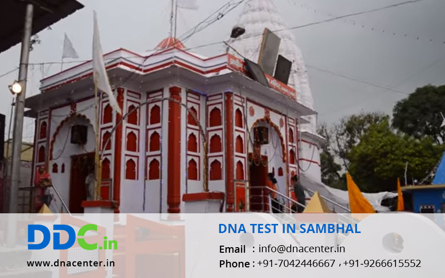 DNA Test in Sambhal