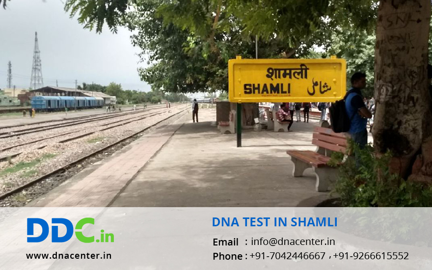DNA Test in Shamli