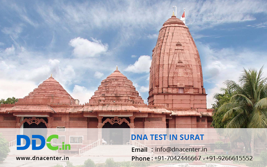 DNA Test in Surat