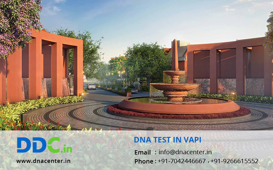 DNA Test in Vapi