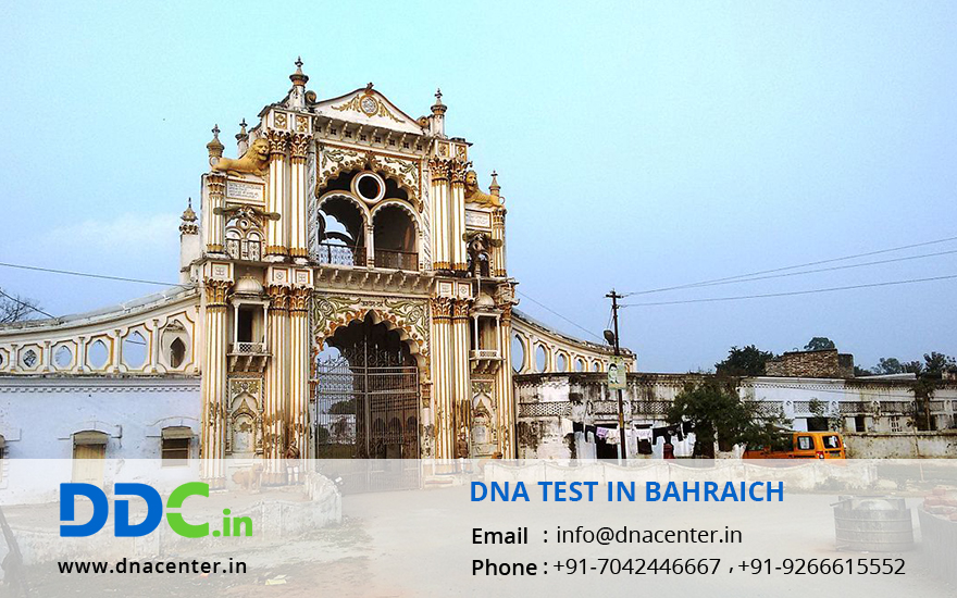 DNA Test in Bahraich