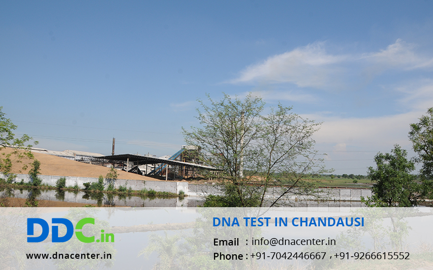 DNA Test in Chandausi