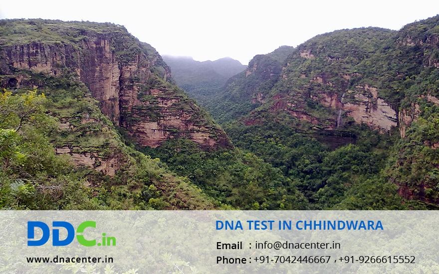 DNA Test in Chhindwara