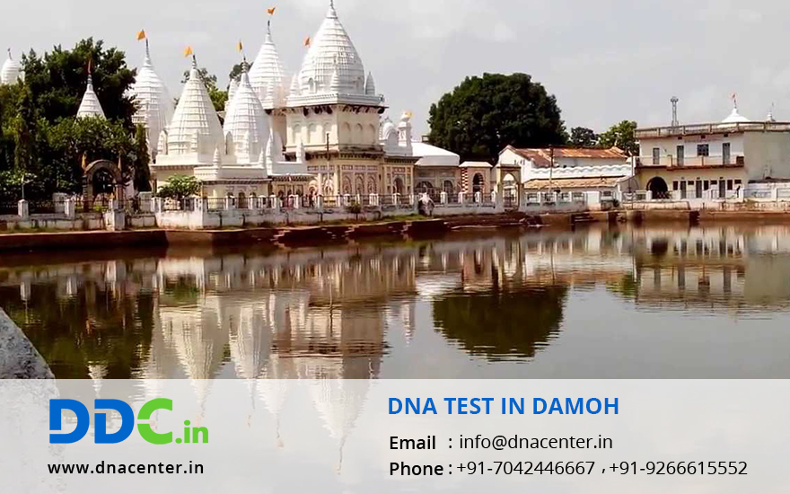 DNA Test in Damoh