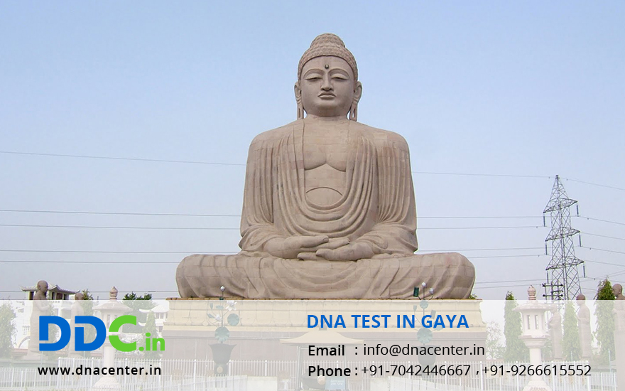 DNA Test in Gaya
