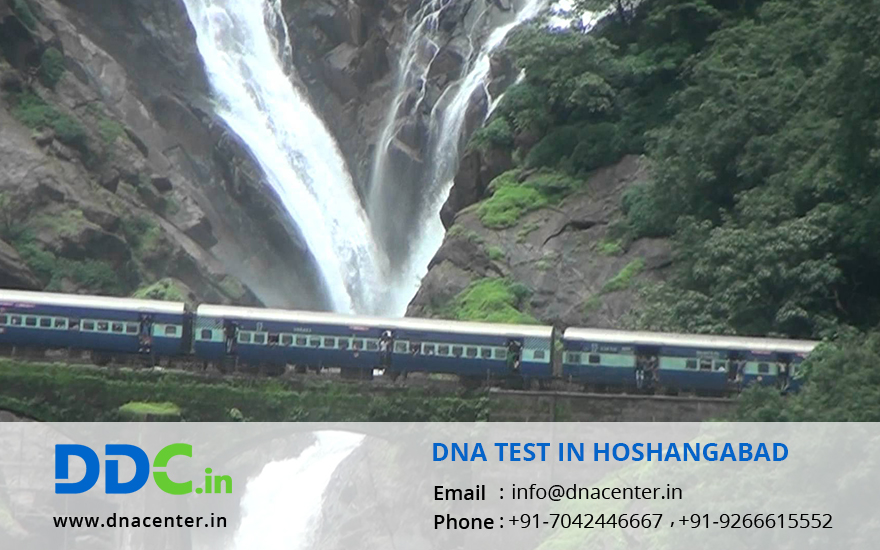 DNA Test in Hoshangabad