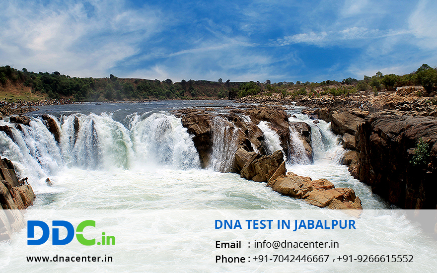 DNA Test in Jabalpur