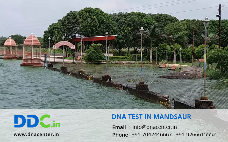DNA Test in Mandsaur