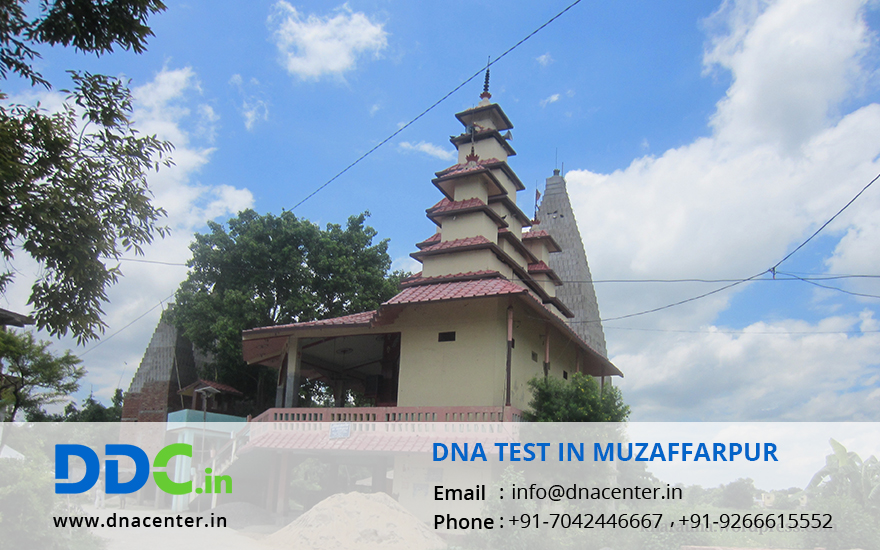 DNA Test in Muzaffarpur
