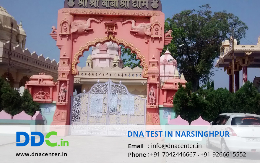 DNA Test in Narsinghpur