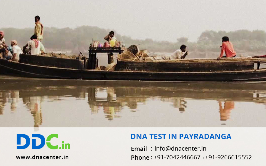 DNA Test in Payradanga