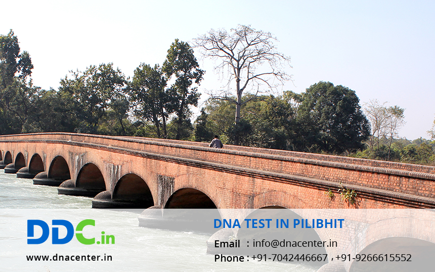 DNA Test in Pilibhit
