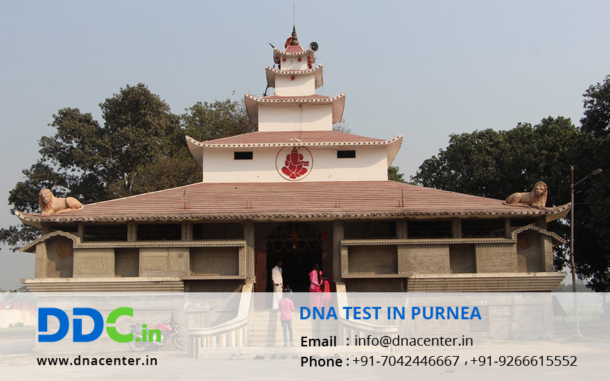 DNA Test in Purnea