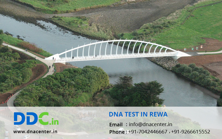 DNA Test in Rewa
