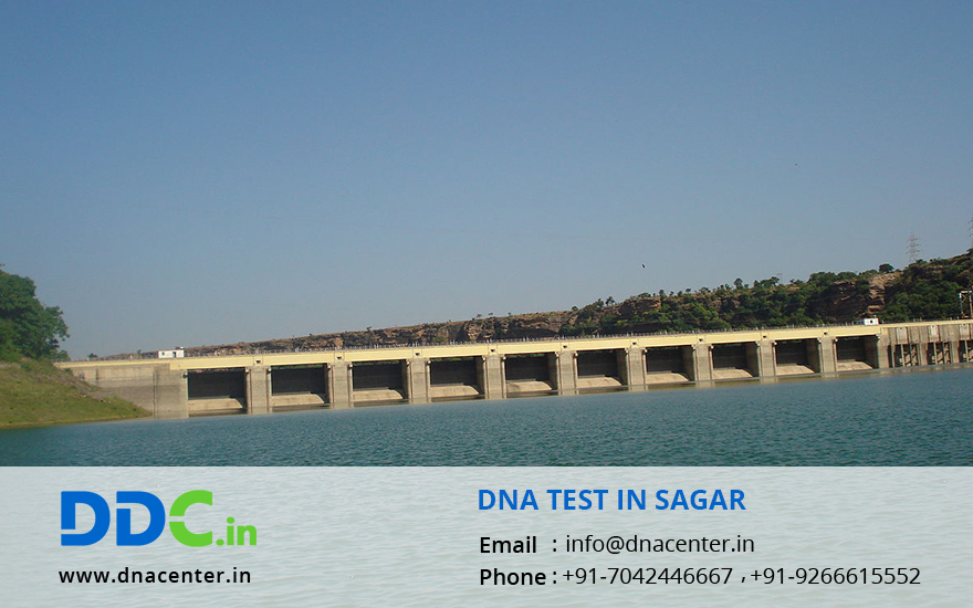 DNA Test in Sagar