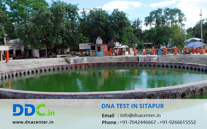 DNA Test in Sitapur
