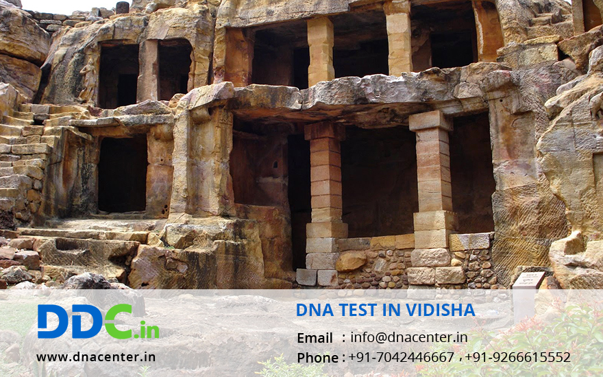 DNA Test in Vidisha