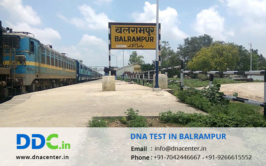 DNA Test in Balrampur