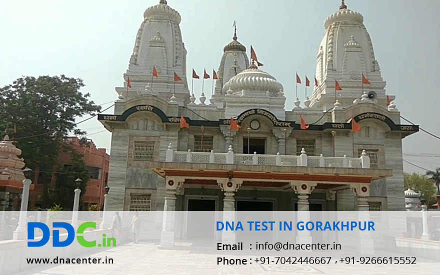 DNA Test in Gorakhpur