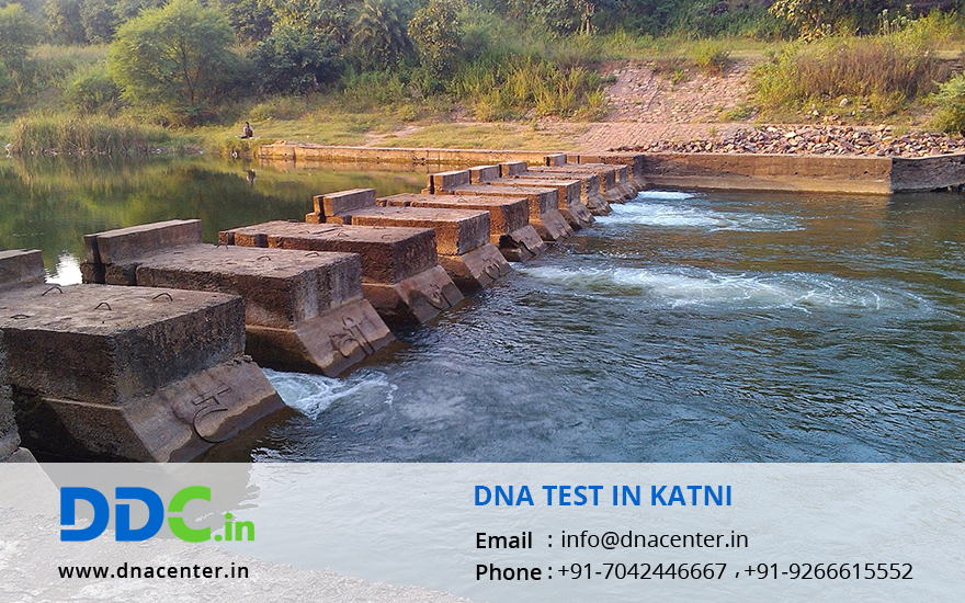 DNA Test in Katni