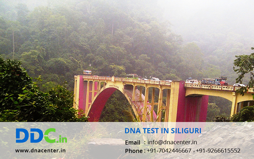 DNA Test in Siliguri