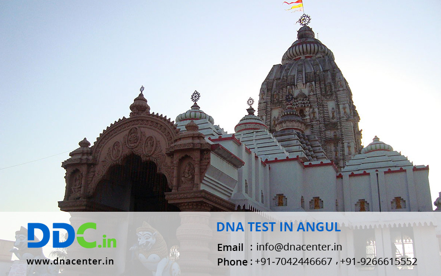 DNA Test in Angul