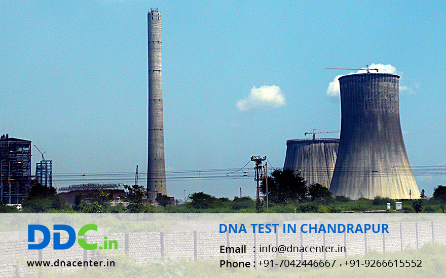 DNA Test in Chandrapur