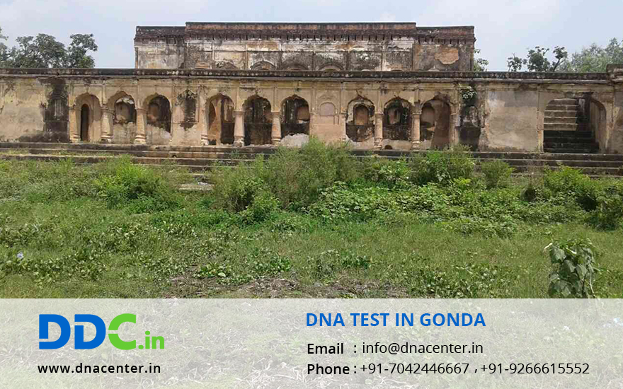 DNA Test in Gonda