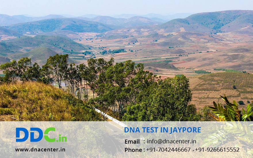 DNA Test in Jaypore