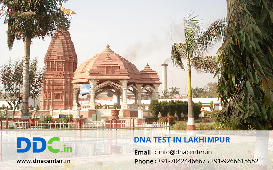 DNA Test in Lakhimpur
