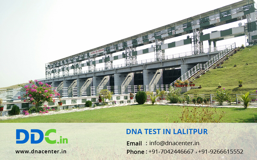 DNA Test in Lalitpur