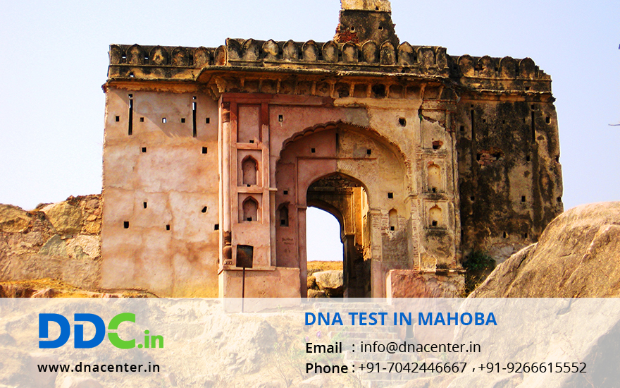 DNA Test in Mahoba
