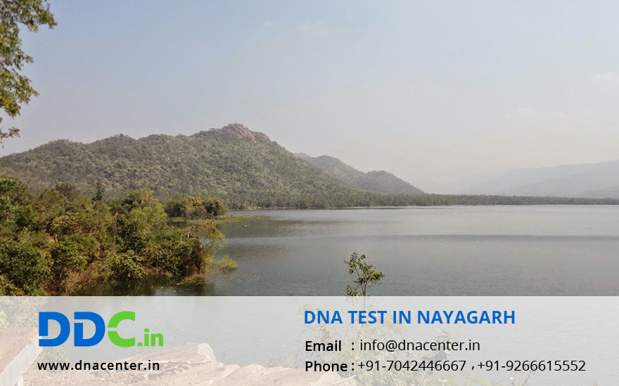 DNA Test in Nayagarh