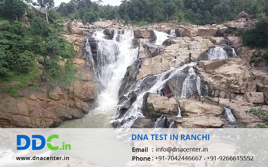 DNA Test in Ranchi