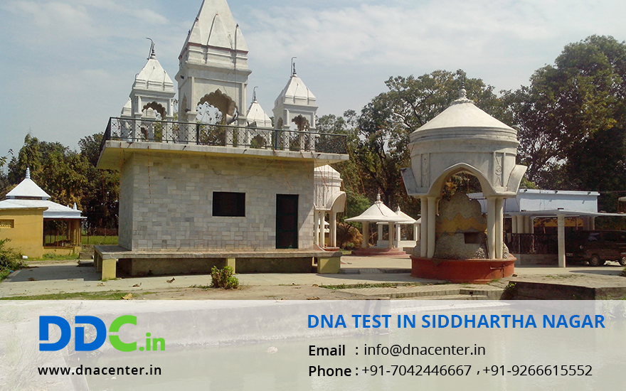 DNA Test in Siddhartha Nagar