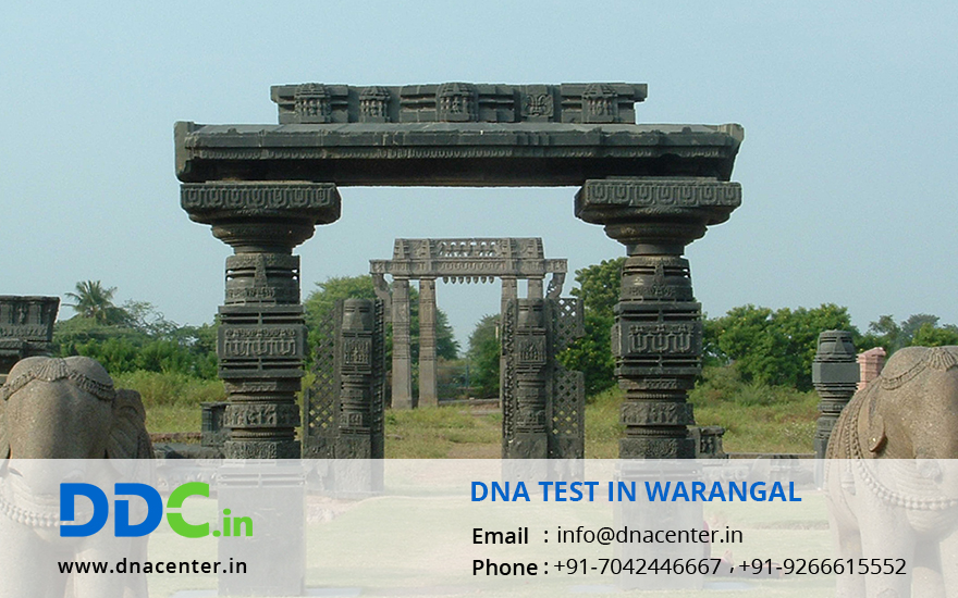 DNA Test in Warangal