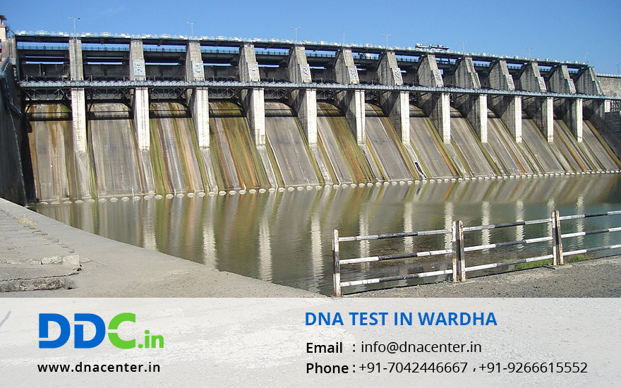 DNA Test in Wardha