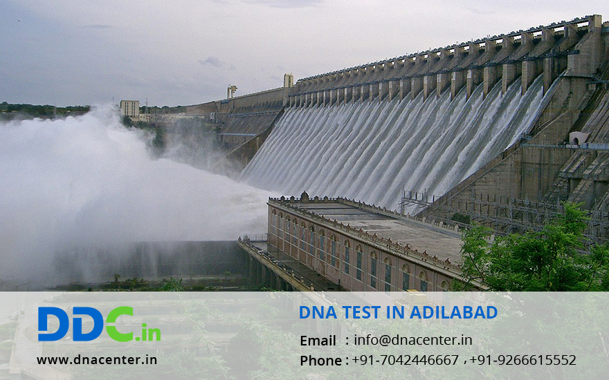 DNA Test in Adilabad