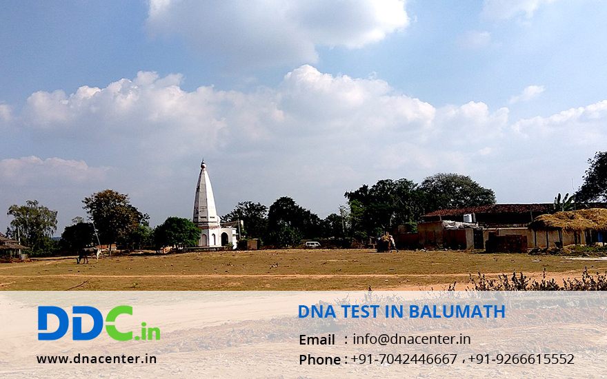 DNA Test in Balumath