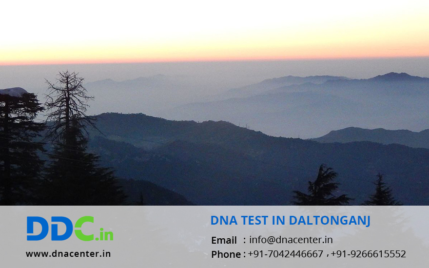 DNA Test in Daltonganj