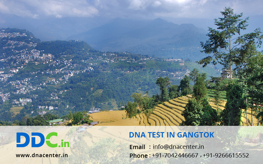 DNA Test in Gangtok