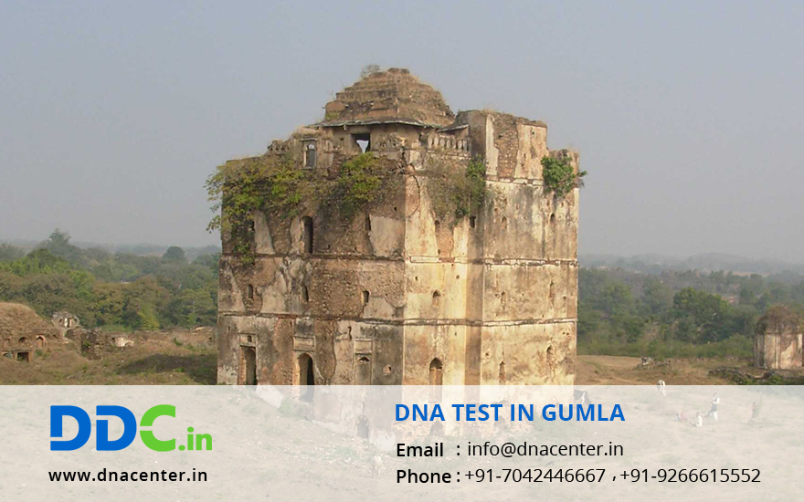 DNA Test in Gumla